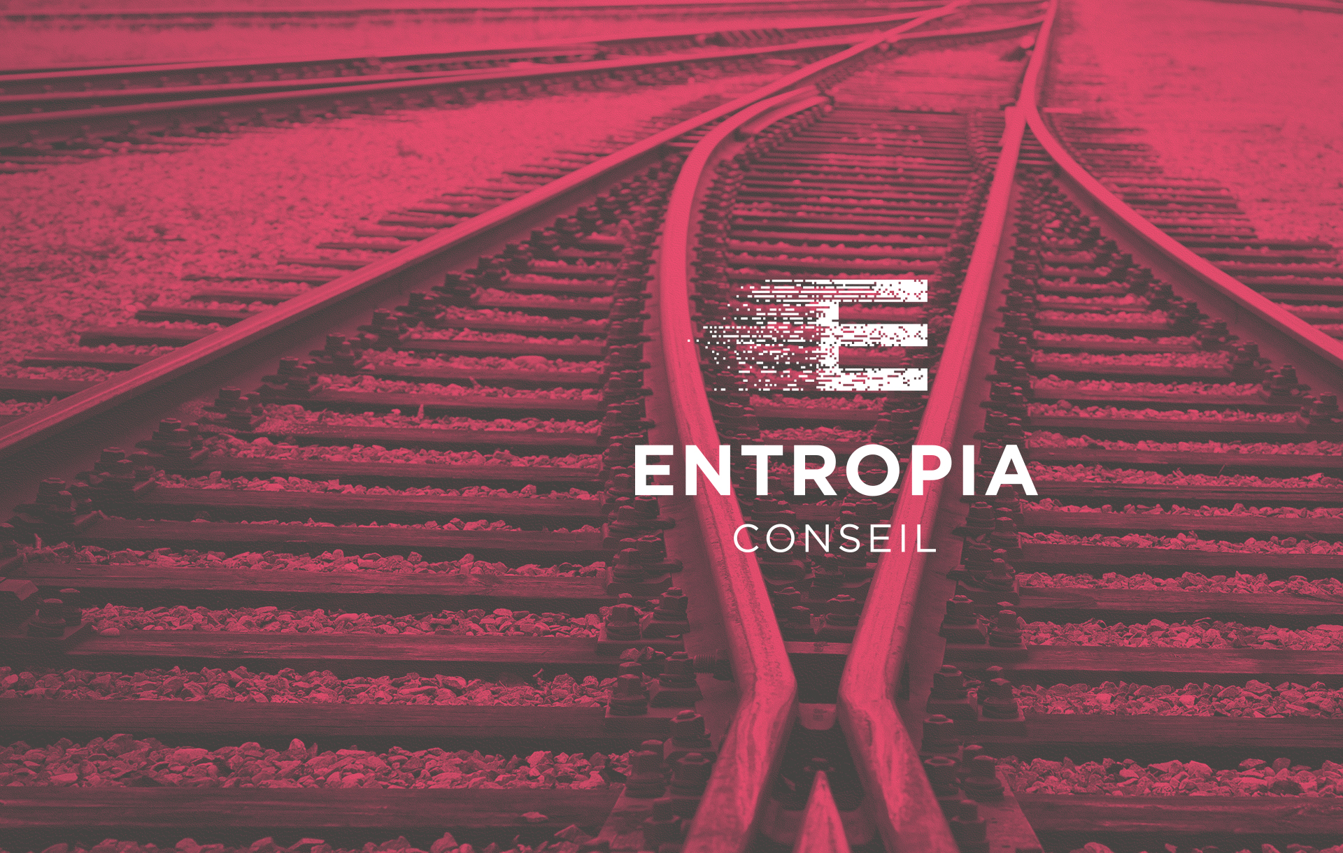 Entropia Conseil Brand Identity, visuel identity, Logotype, Brochure, internet, Stationnery, Letter, Business Card